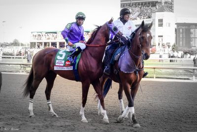 california-chrome2